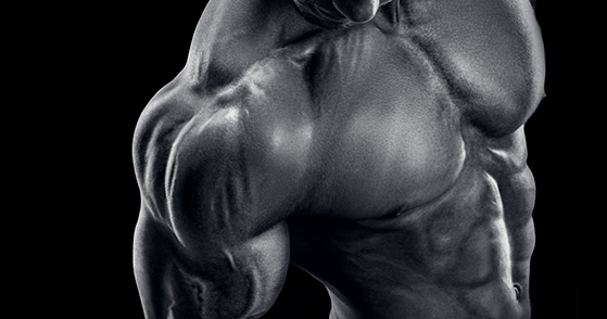 What is s4 and how does it compare to other sarms