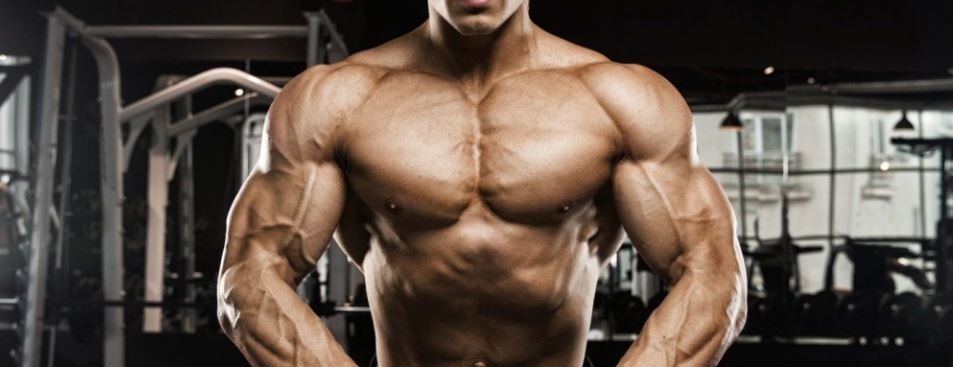 The 5 Best Sarms For Cutting The Complete Guide To Sarms